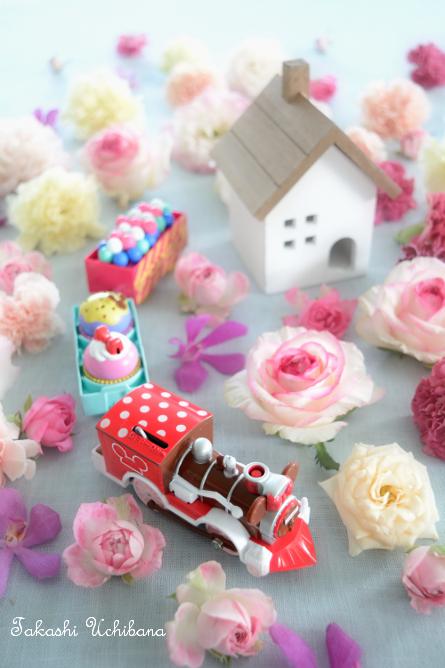 タカシのウチ花 かわいいプラレール ミニーマウス スウィーツロコモーション